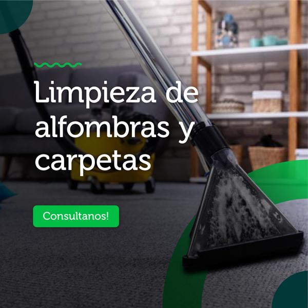 slide-mobile-alfombra-carpetas